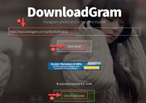 Download Instagram videos with Download Gram